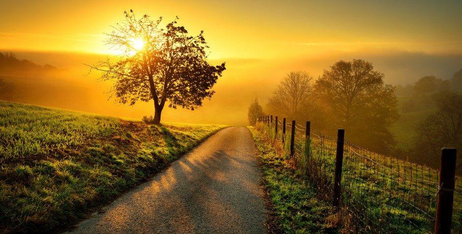 Poursuivre ses rêves : comment ne pas abandonner
