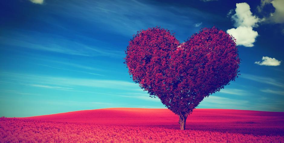 Les 10 choses les plus importantes que nous pouvons faire pour les personnes que nous aimons